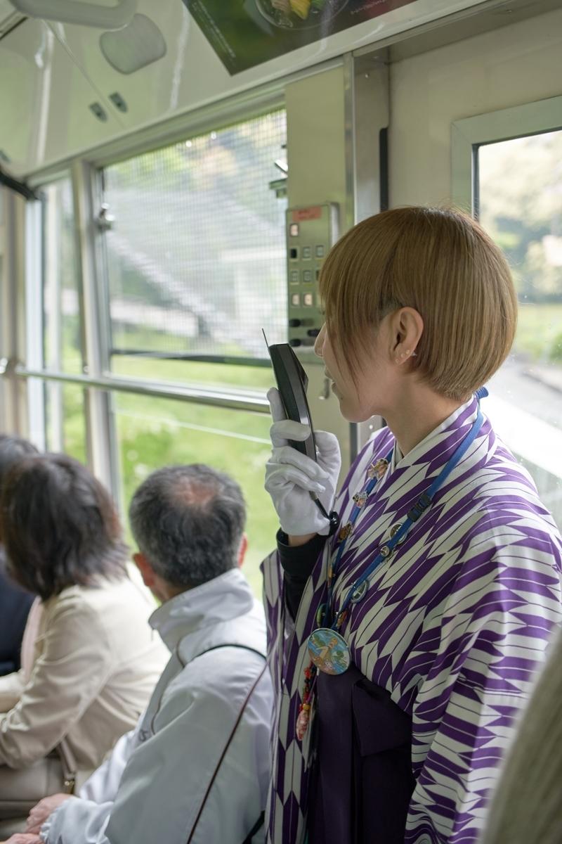 f:id:Komatsuzakiaya:20190615201120j:plain