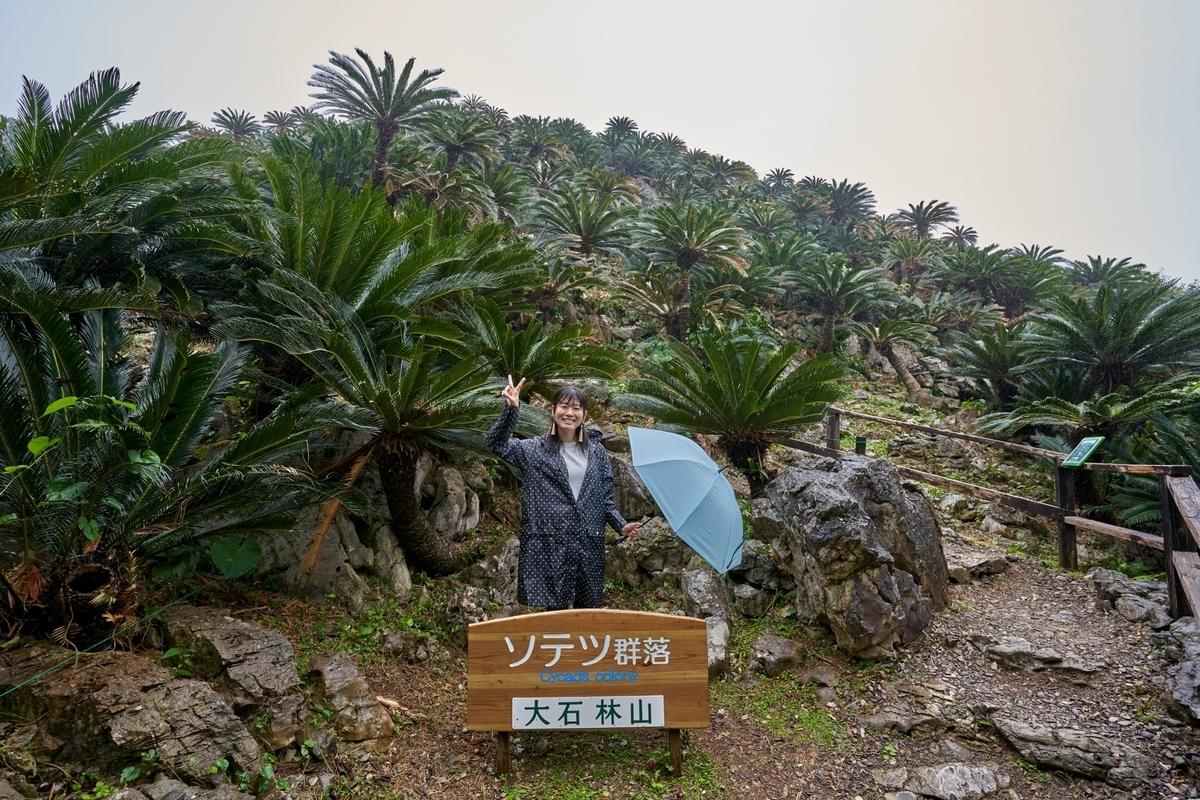 f:id:Komatsuzakiaya:20200324163457j:plain