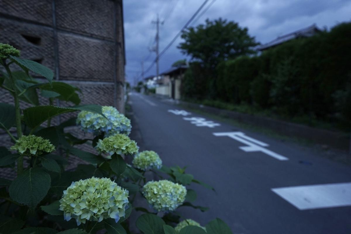 f:id:Komatsuzakiaya:20200529160253j:plain