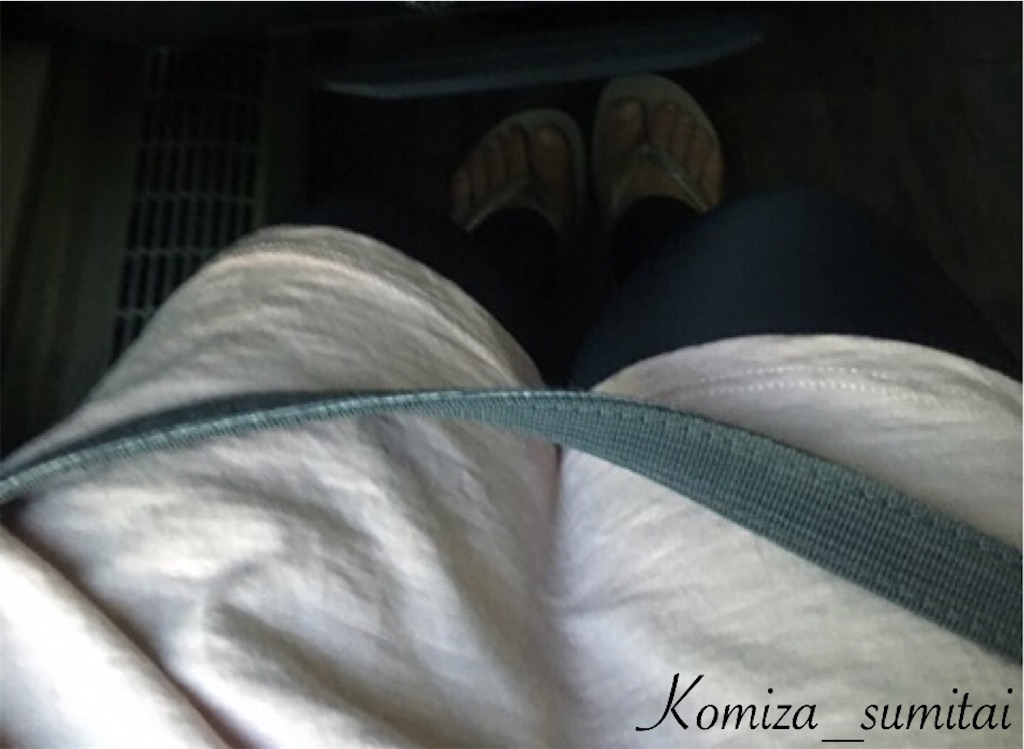 f:id:Komiza_sumitai:20170823013627j:image