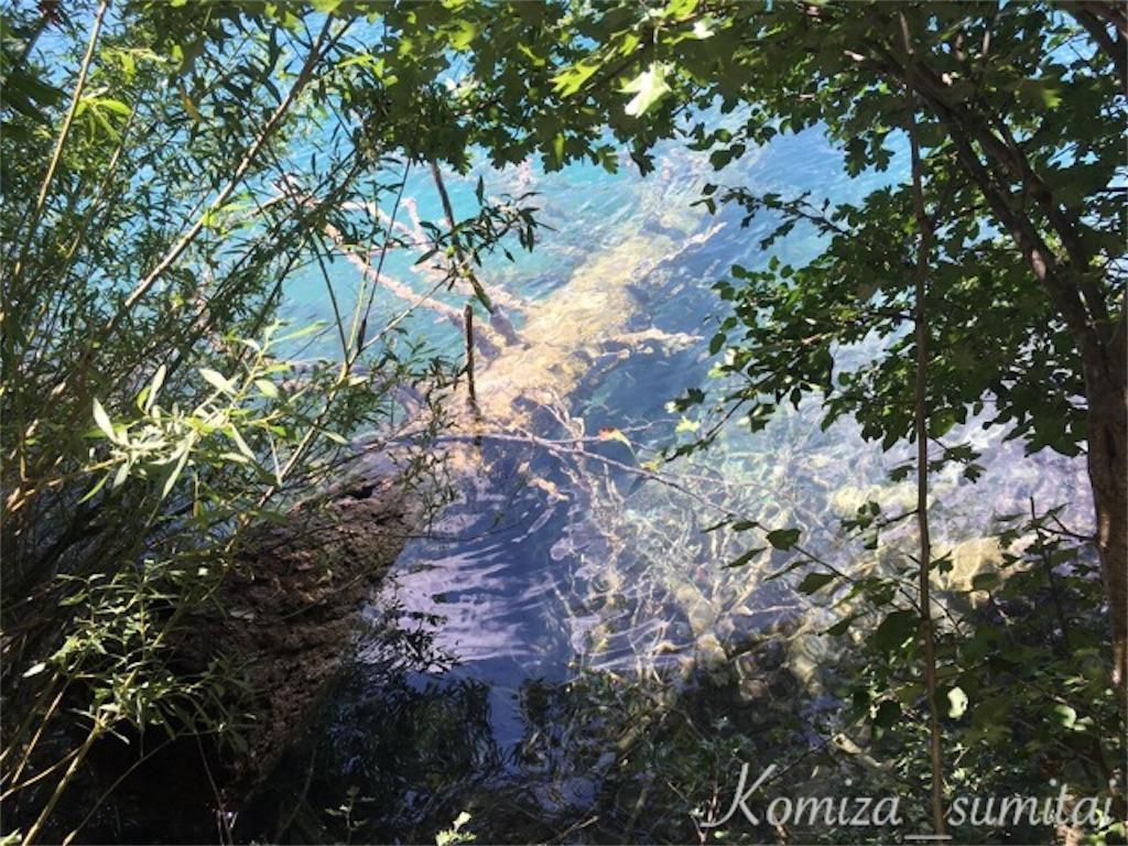 f:id:Komiza_sumitai:20170825001751j:image