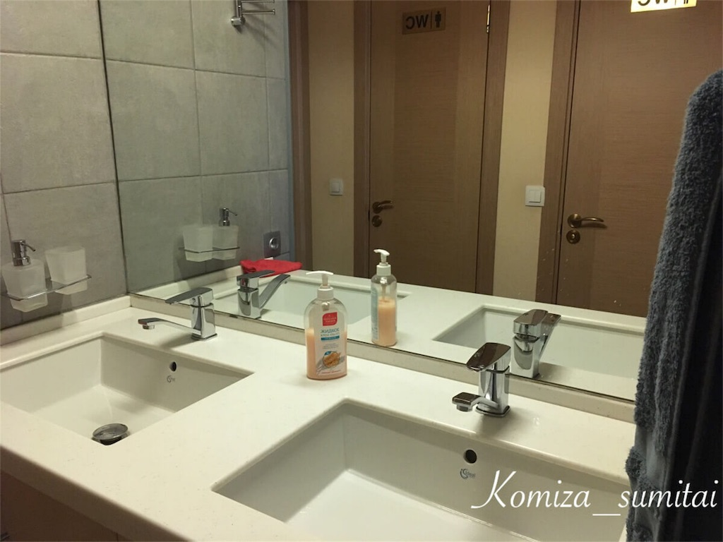 f:id:Komiza_sumitai:20190305031521j:image