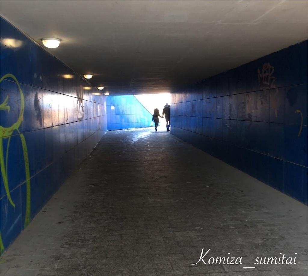 f:id:Komiza_sumitai:20190306232100j:image