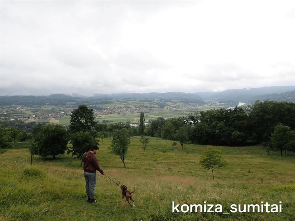 f:id:Komiza_sumitai:20191006212110p:image