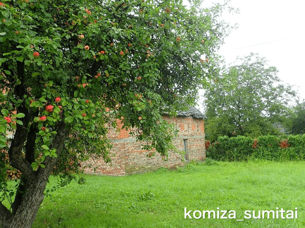 f:id:Komiza_sumitai:20191006213513p:image