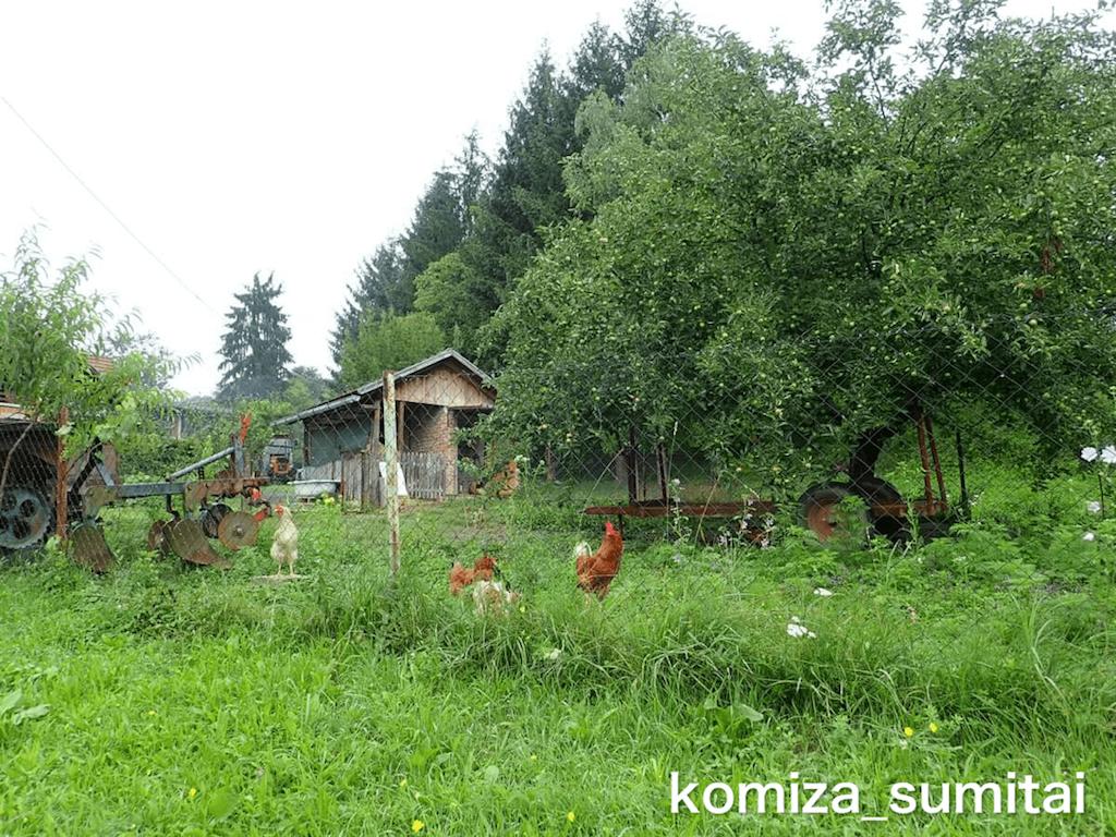 f:id:Komiza_sumitai:20191006213519p:image