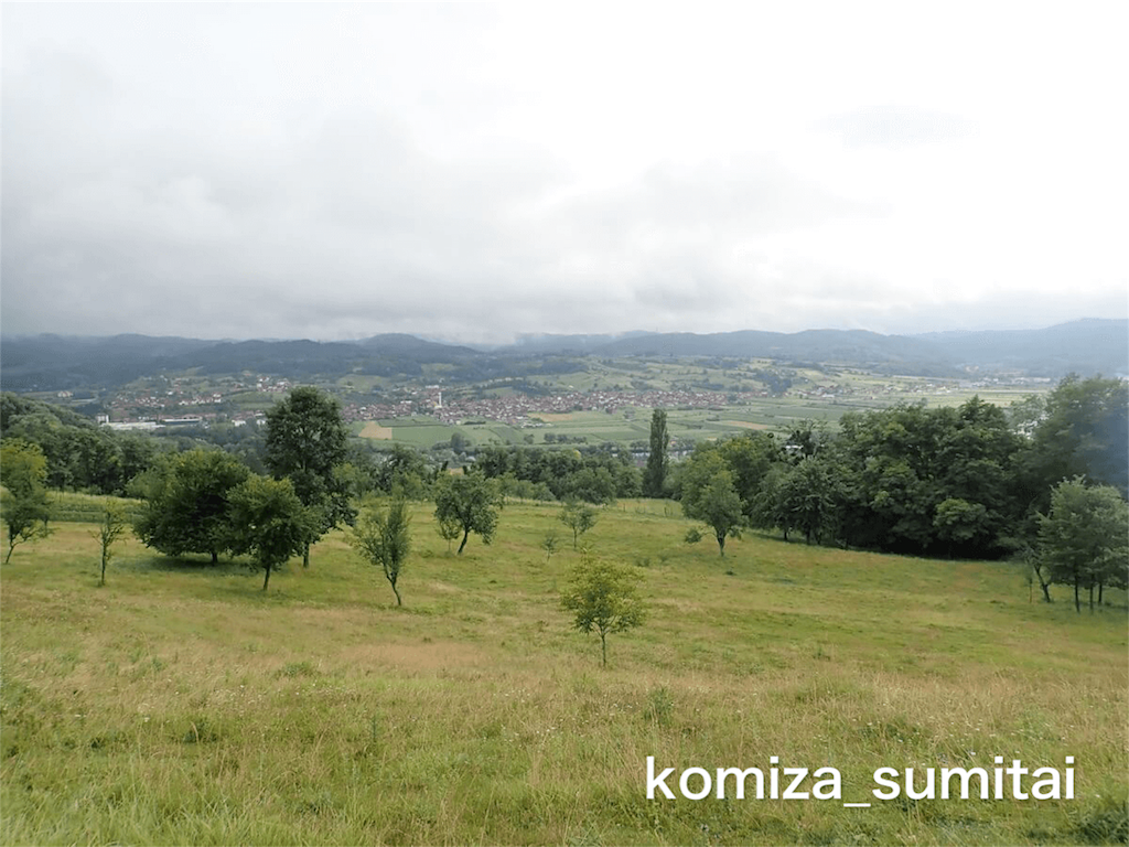 f:id:Komiza_sumitai:20191006213542p:image