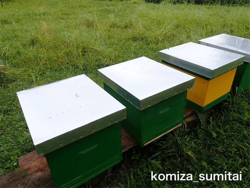 f:id:Komiza_sumitai:20191006213800p:image