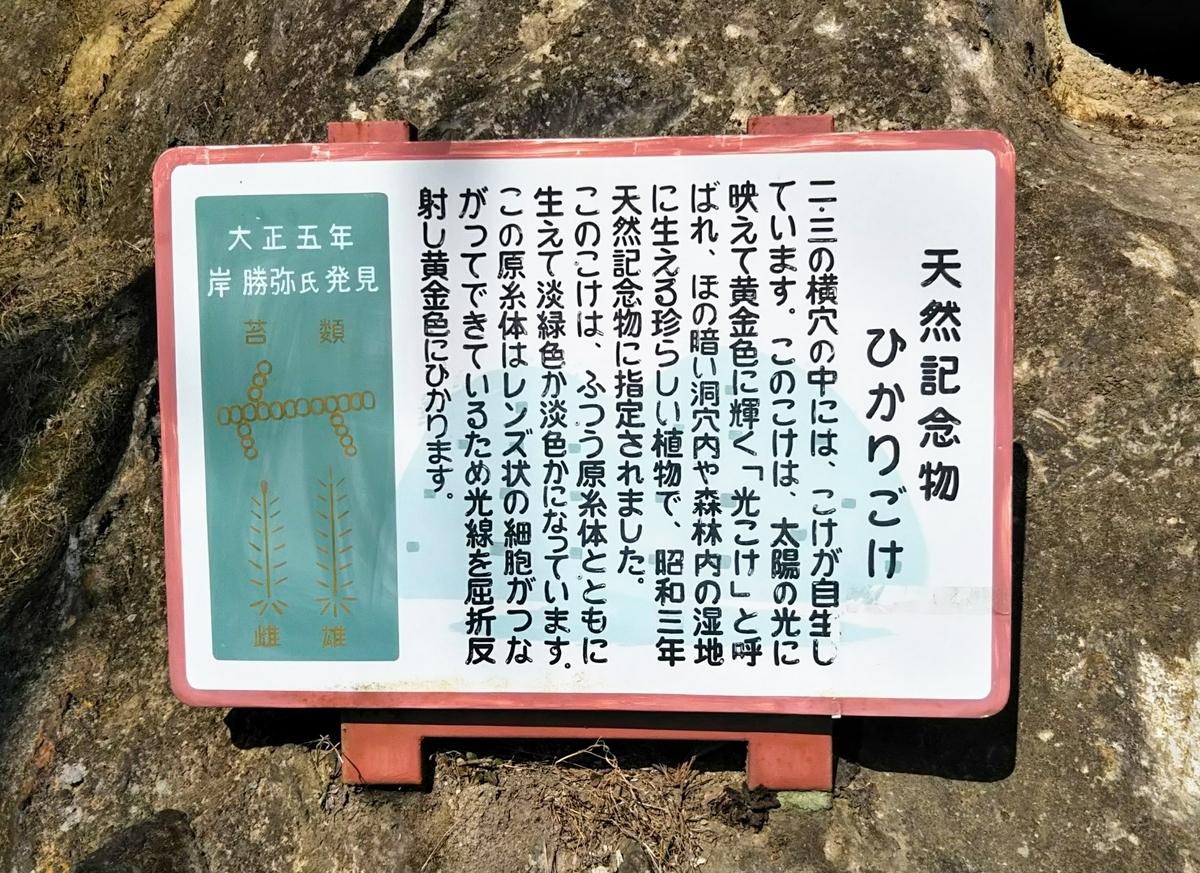 f:id:Komugimama:20200322021915j:plain