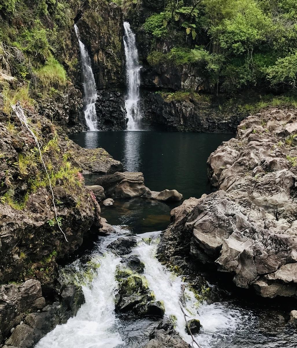 f:id:KonaHawaii:20200518075226j:plain