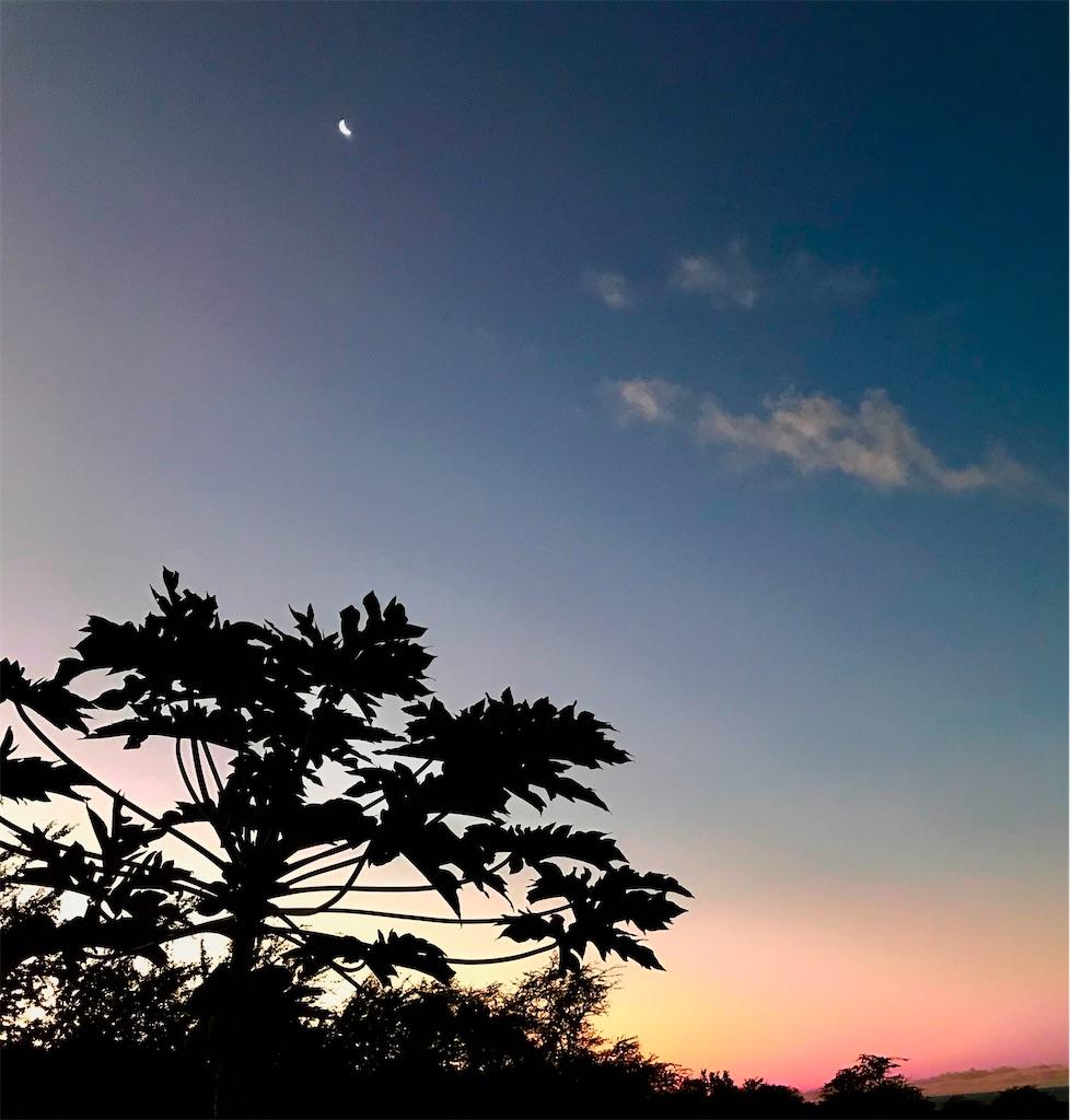 f:id:KonaHawaii:20210207141303j:image