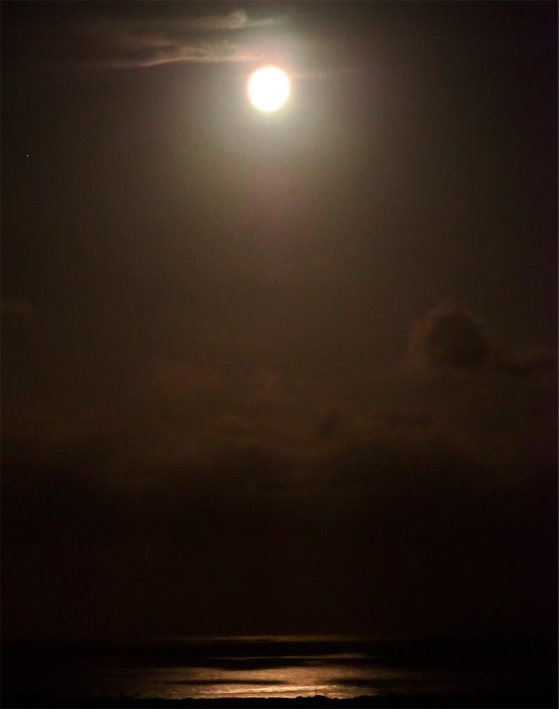 f:id:KonaHawaii:20210227144848j:image