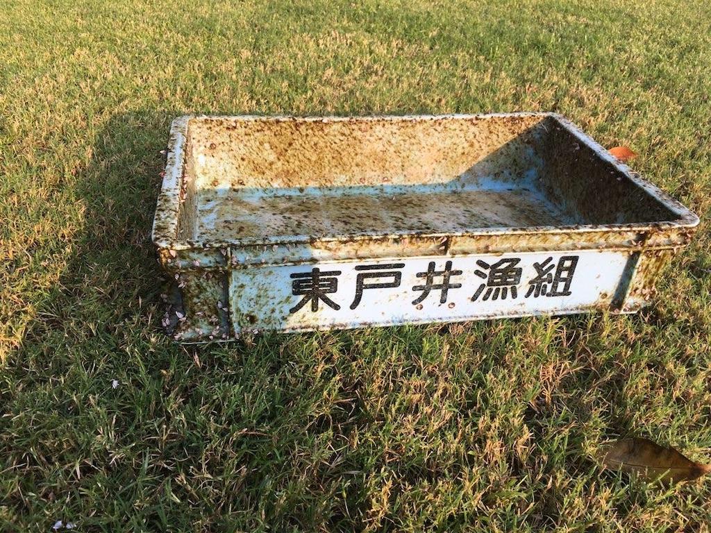 f:id:KonaHawaii:20210313020245j:image