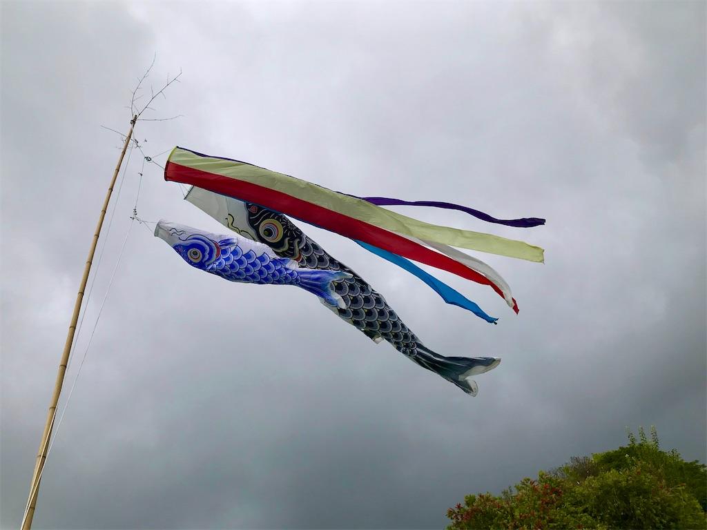 f:id:KonaHawaii:20210503151810j:image