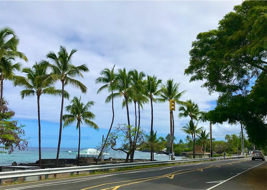 f:id:KonaHawaii:20210603094406j:image