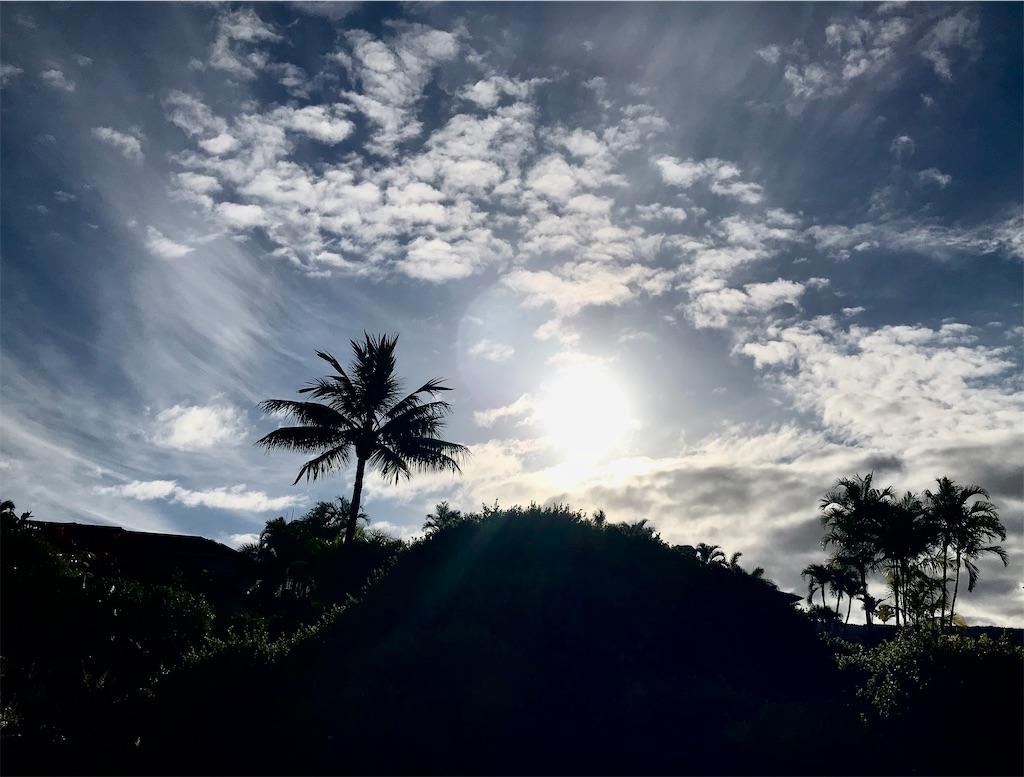f:id:KonaHawaii:20210626154135j:image