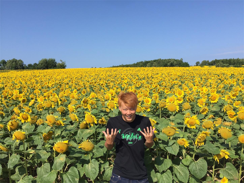 f:id:Kosaku_n_kazuto:20160813203154j:image