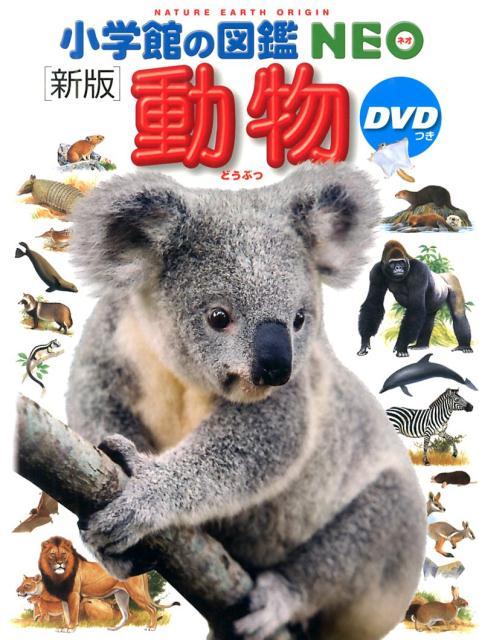 f:id:Kotaro_wombat:20200731195811j:plain