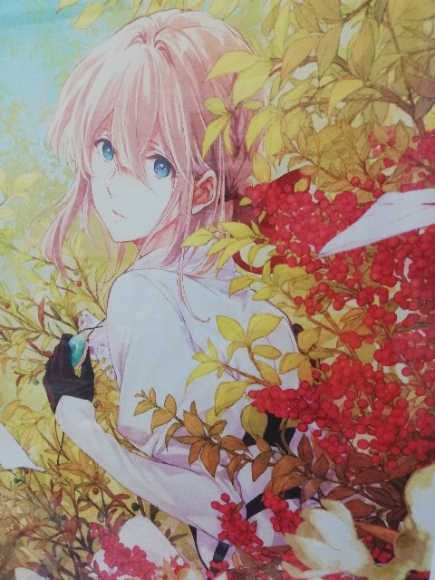 f:id:Kotori_Violet:20210124014129j:image