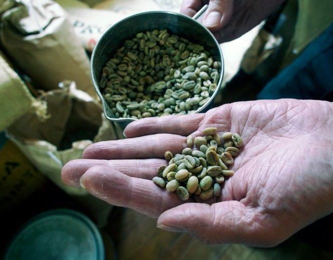 井戸・コーヒー豆