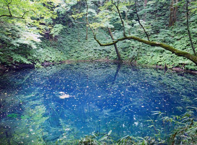 十二湖_青池