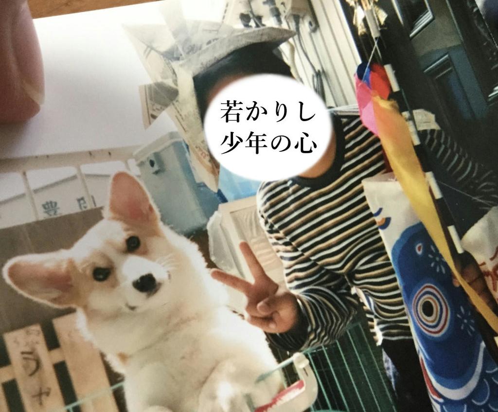 f:id:KouTchan_Z:20190104195604j:plain