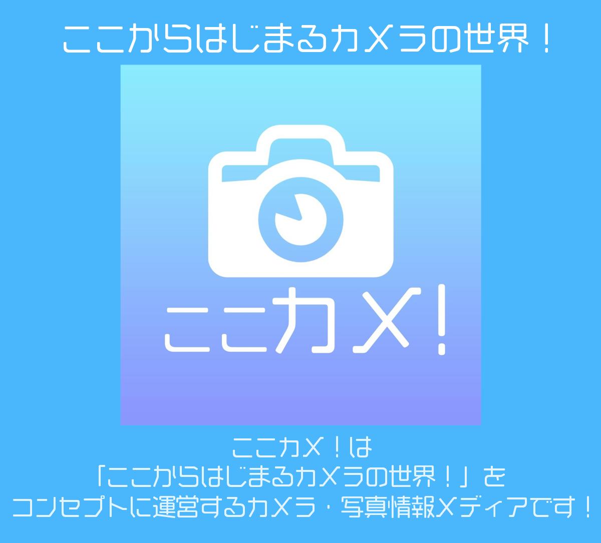 f:id:KouTchan_Z:20200507165515j:plain