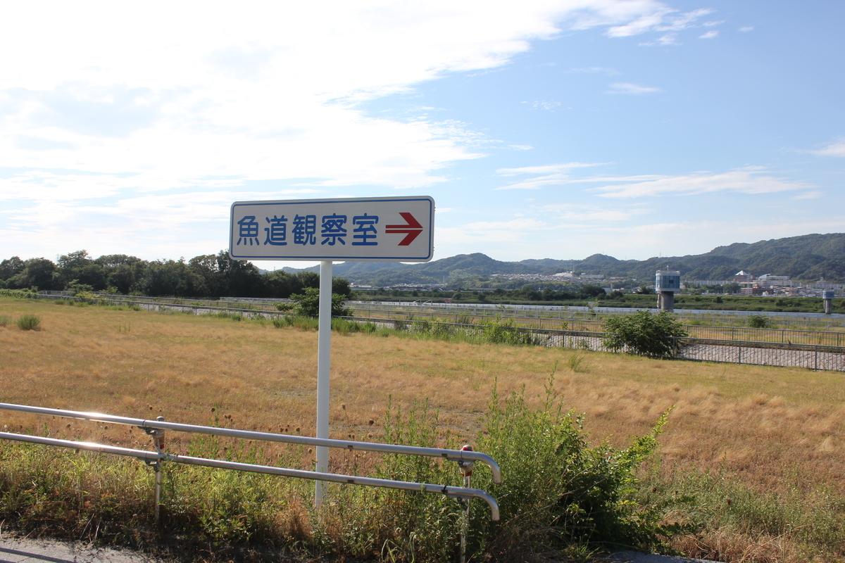 f:id:Ksuke-D:20201128165423j:plain
