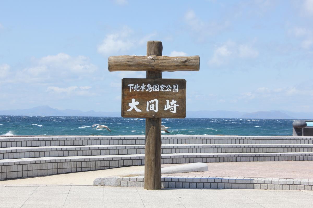 f:id:Ksuke-D:20201220131409j:plain