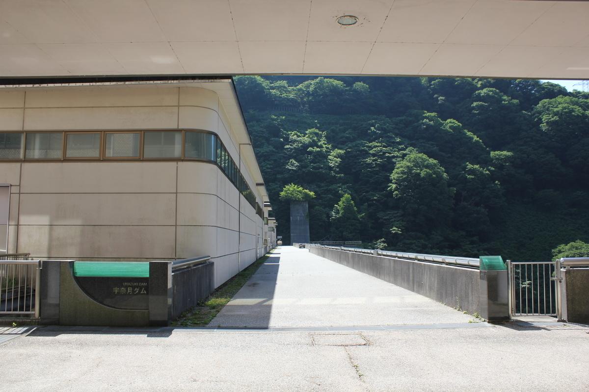 f:id:Ksuke-D:20210504151721j:plain
