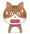 cat_surprise.png