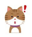 cat_idea.png