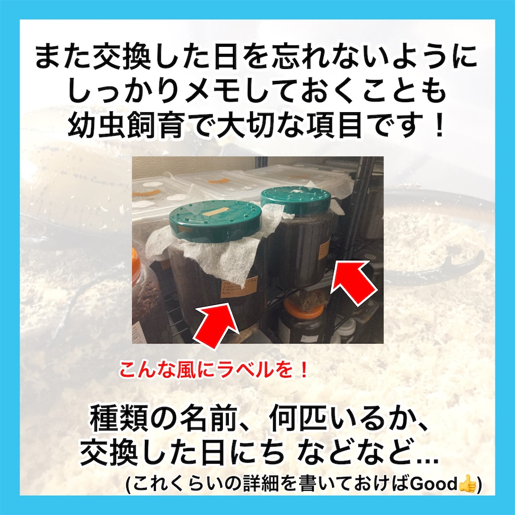 f:id:Kumi-everydayhard:20201015164047j:image