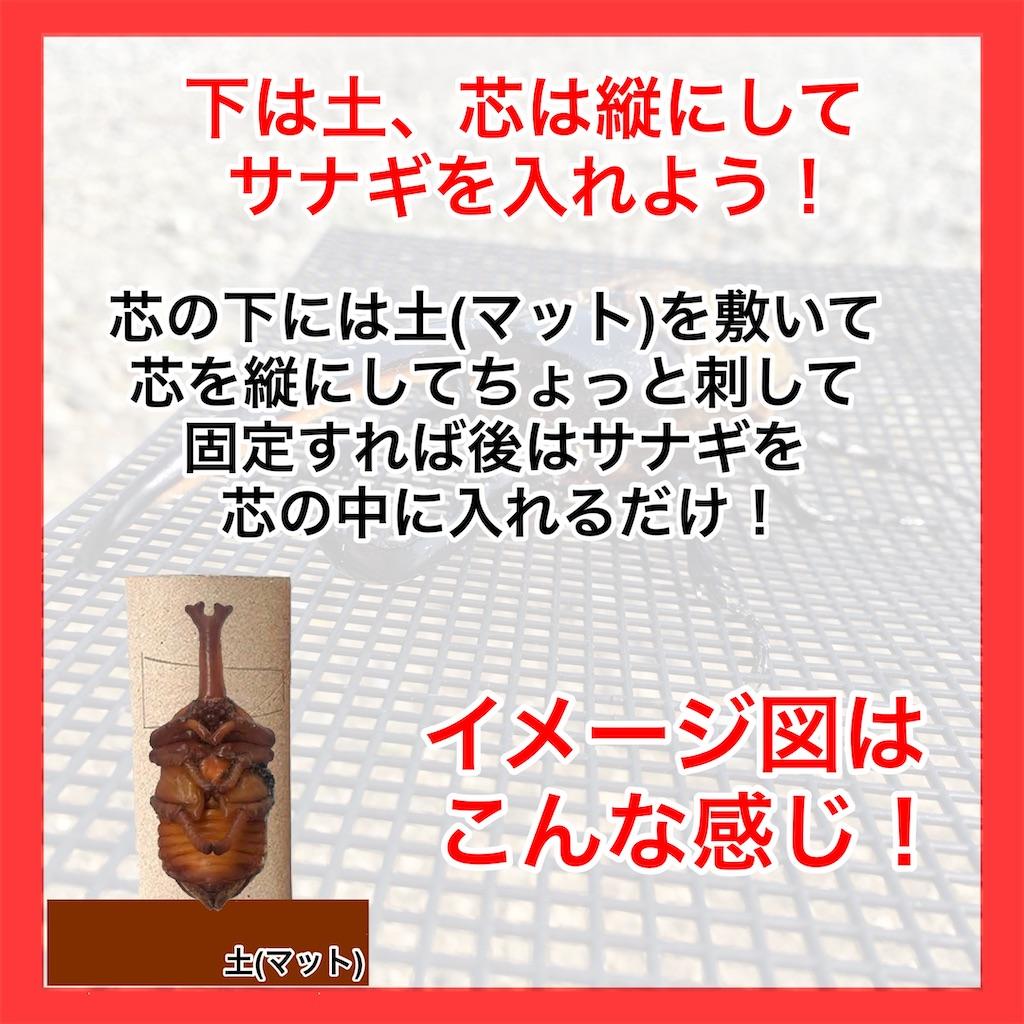 f:id:Kumi-everydayhard:20201021193038j:image