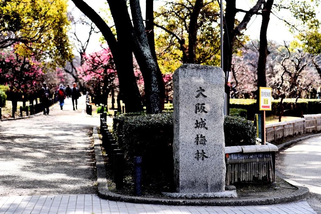 f:id:Kuniofukudaicloudcom:20170206183829j:image