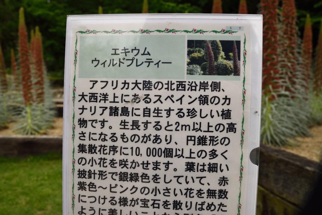 f:id:Kuniofukudaicloudcom:20170514082512j:image