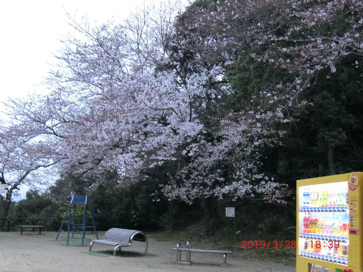 f:id:Kurotyamame:20190328215814j:plain