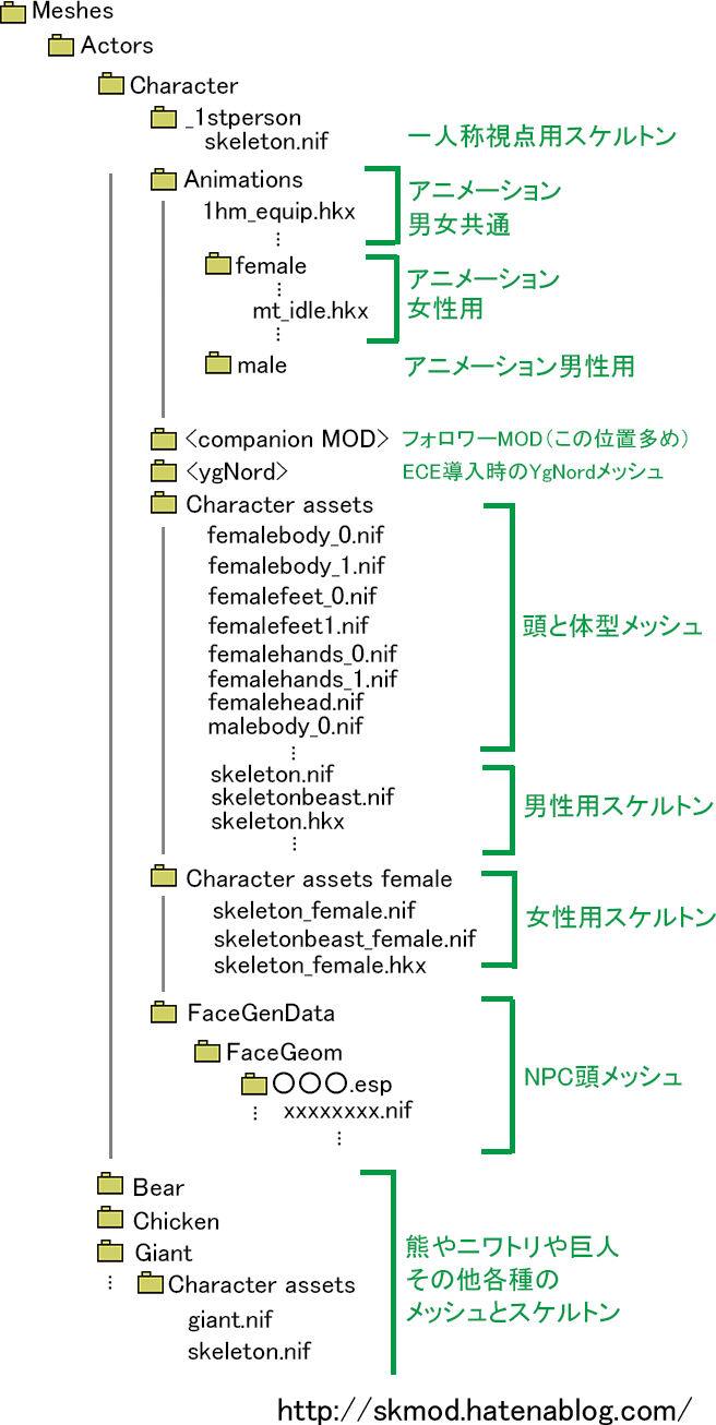 skyrimフォルダ構成図メッシュ(キャラクタ)