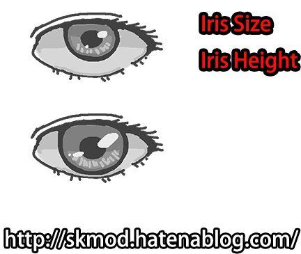 目の大きさと虹彩の大きさの違い