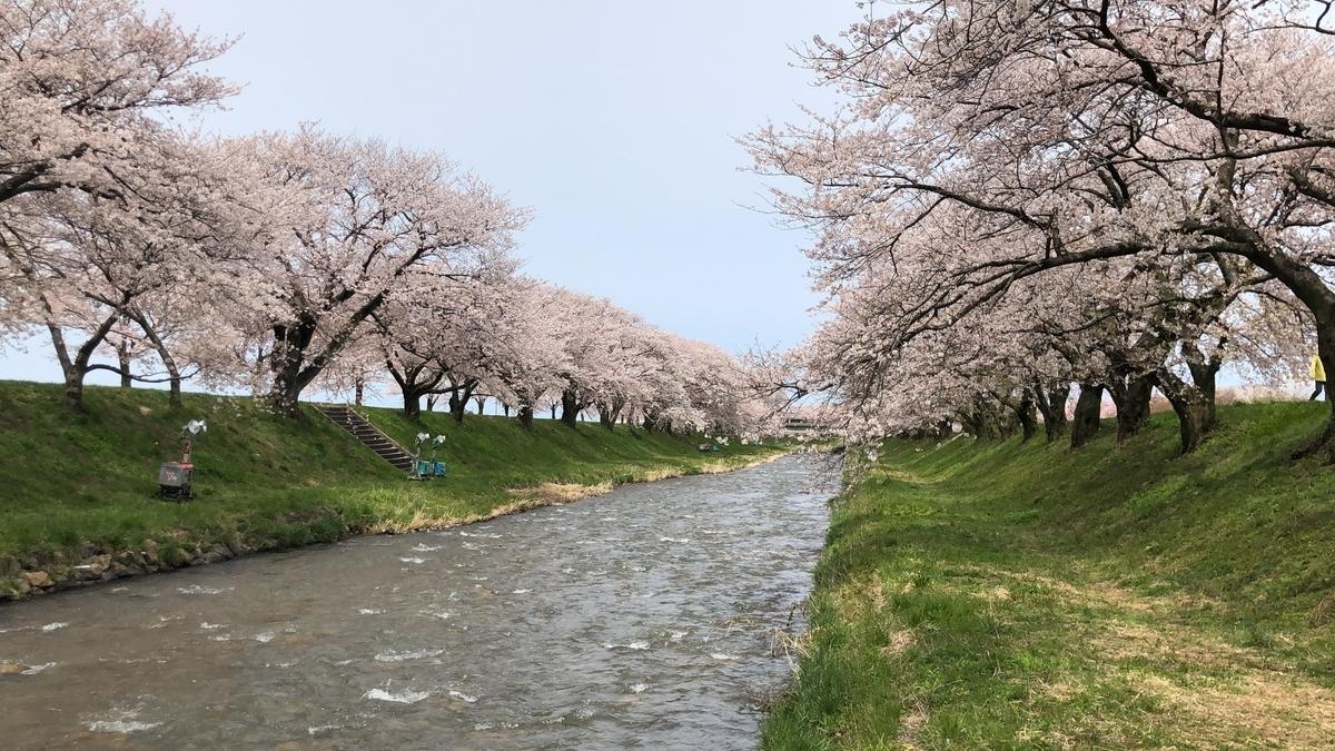 f:id:Kuunyan_takashi:20200416160516j:plain