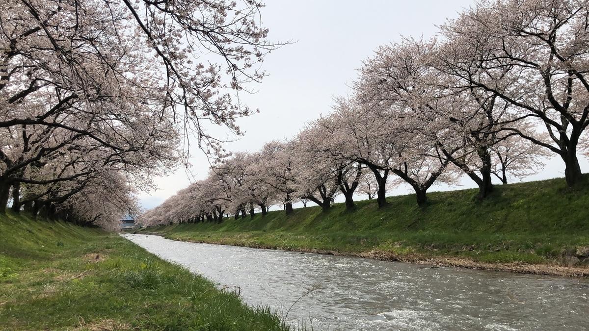 f:id:Kuunyan_takashi:20200416160533j:plain