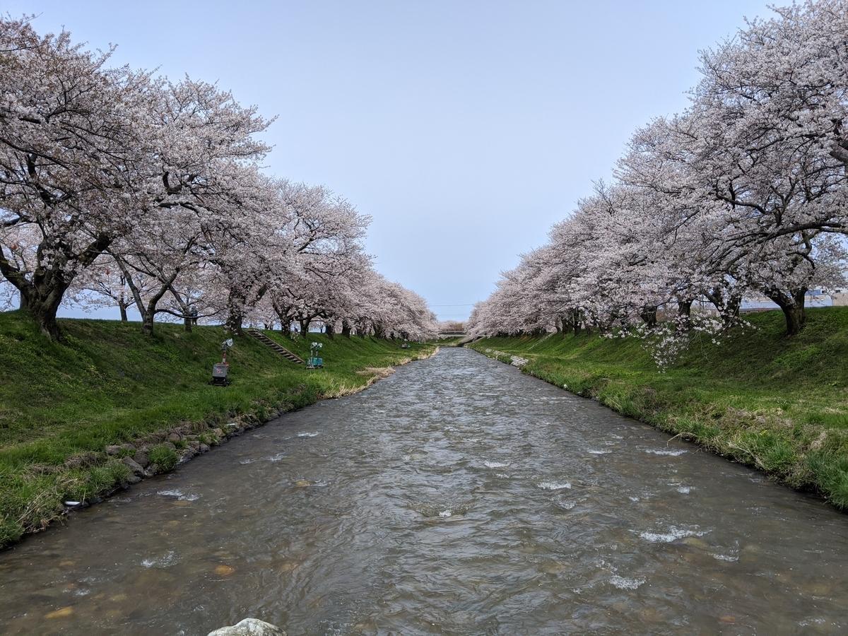 f:id:Kuunyan_takashi:20200416160840j:plain