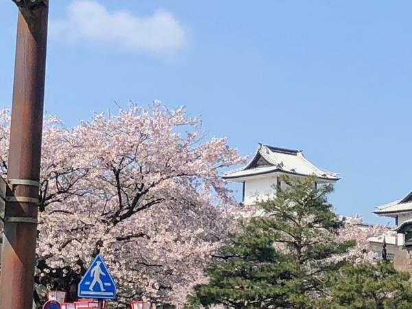 f:id:Kuunyan_takashi:20200530144502j:plain