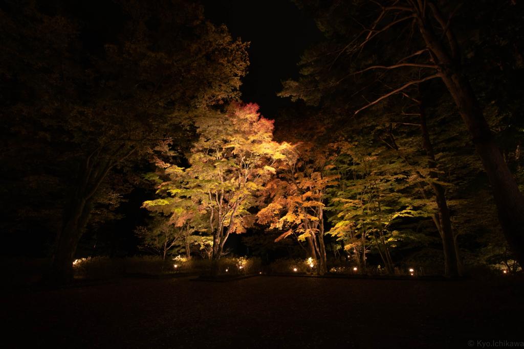 f:id:Kyo_Ichikawa:20161030170823j:plain