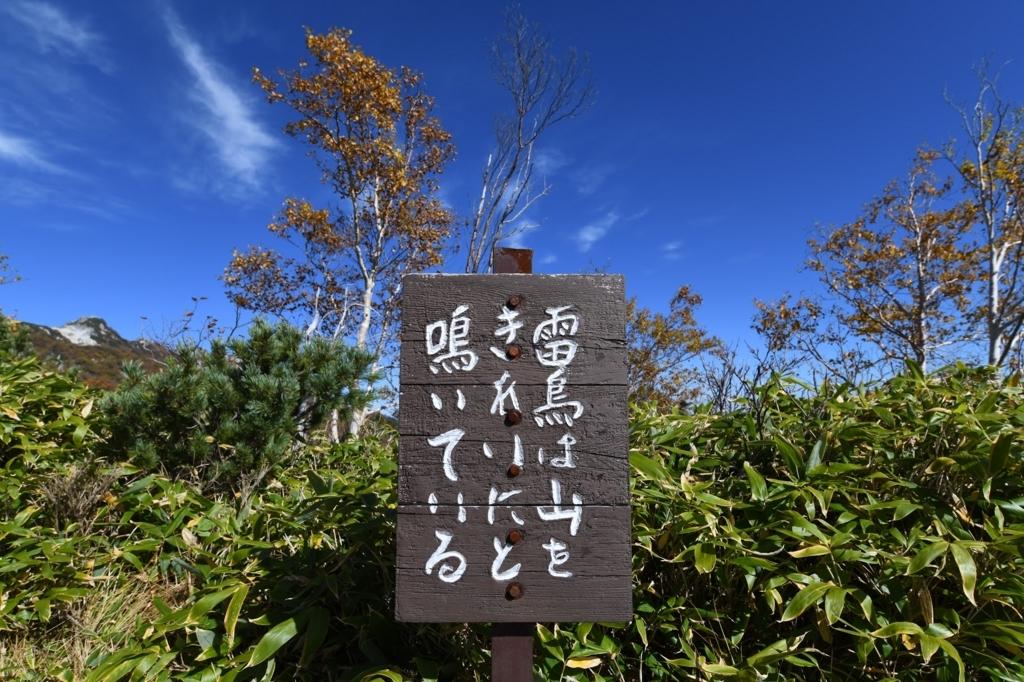 f:id:Kyo_Ichikawa:20171007180006j:plain