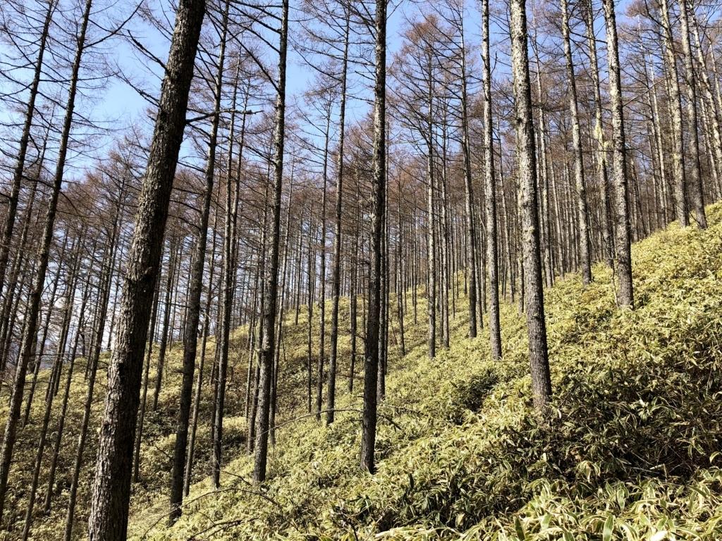 f:id:Kyo_Ichikawa:20180418214535j:plain