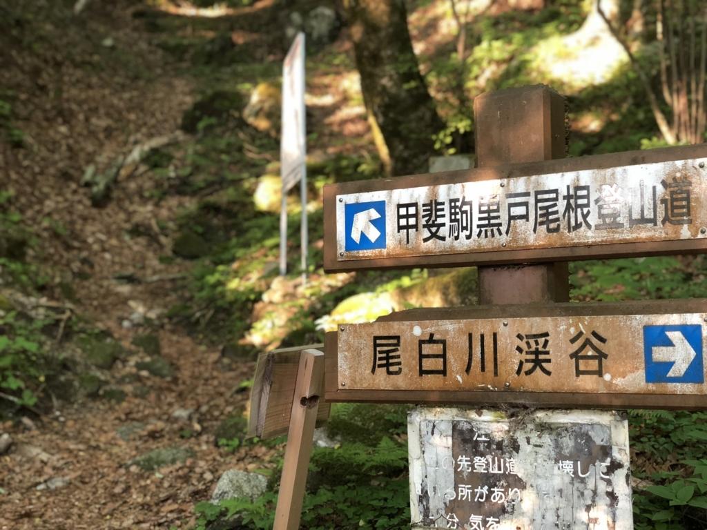 f:id:Kyo_Ichikawa:20180626215139j:plain