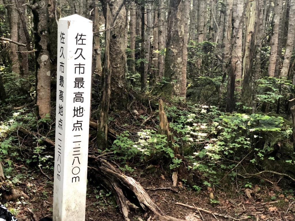 f:id:Kyo_Ichikawa:20180729111250j:plain