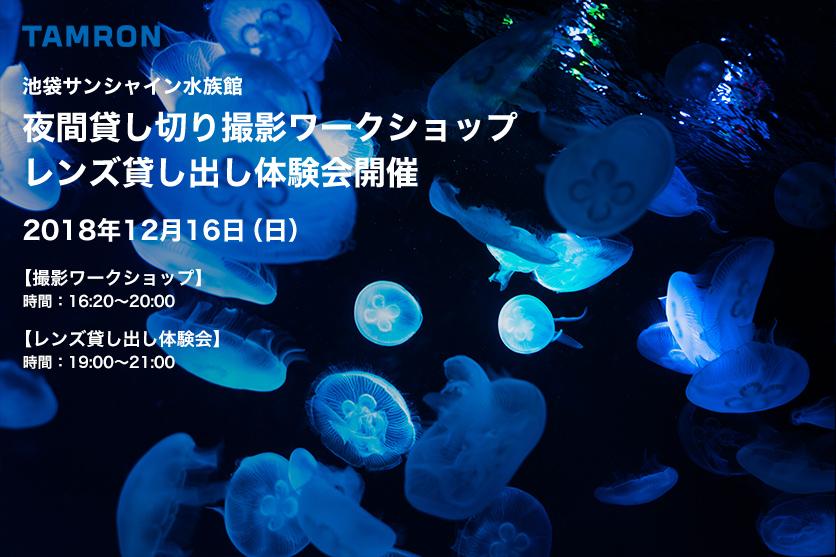 f:id:Kyo_Ichikawa:20181217181904j:plain