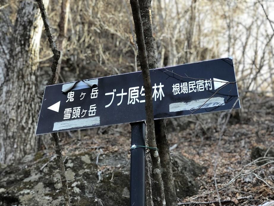 f:id:Kyo_Ichikawa:20190218185615j:plain
